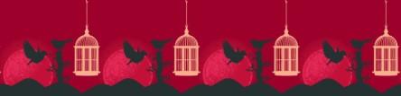 fourbirdscages
