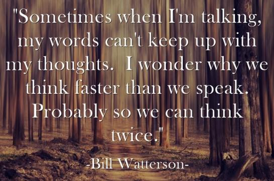 billwatterson2