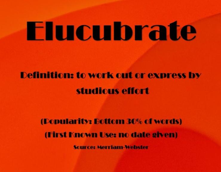 elucubrate