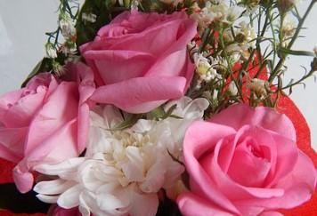 pinkwhiteflowers
