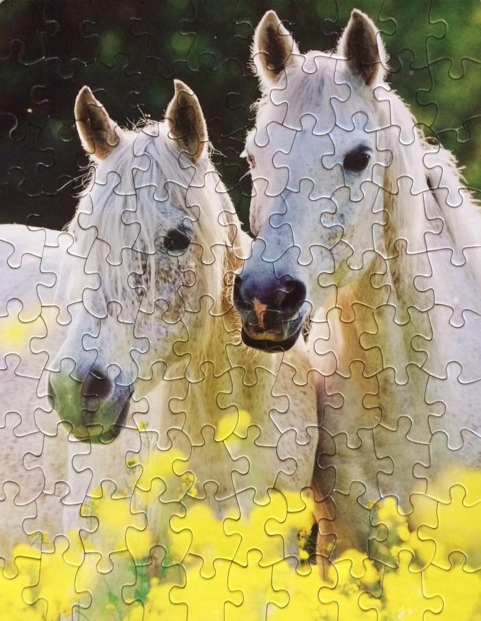 horsespuzzle