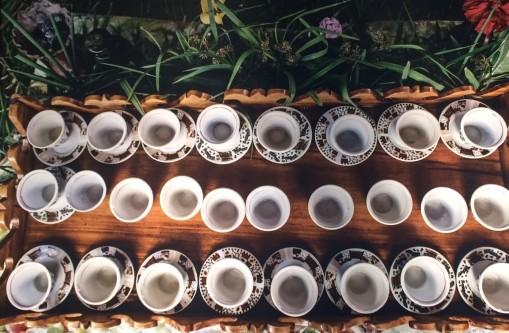 teacupsb