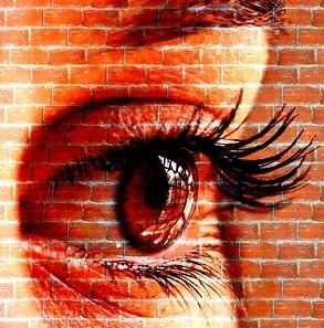 eyebricks