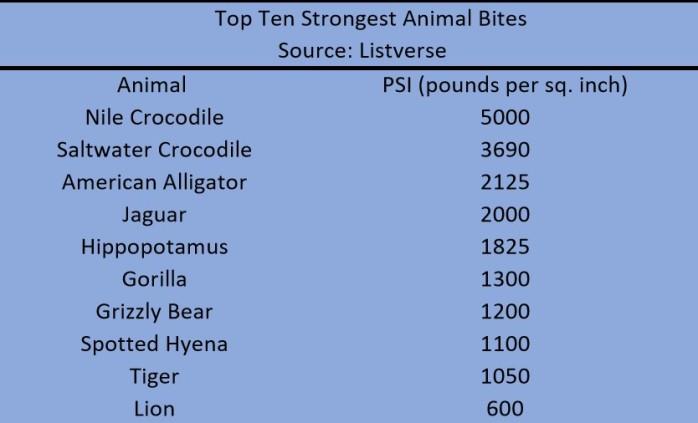 animalbites