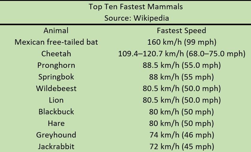 mammals1