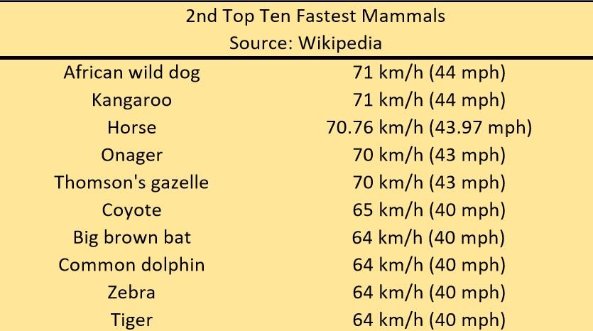 mammals2