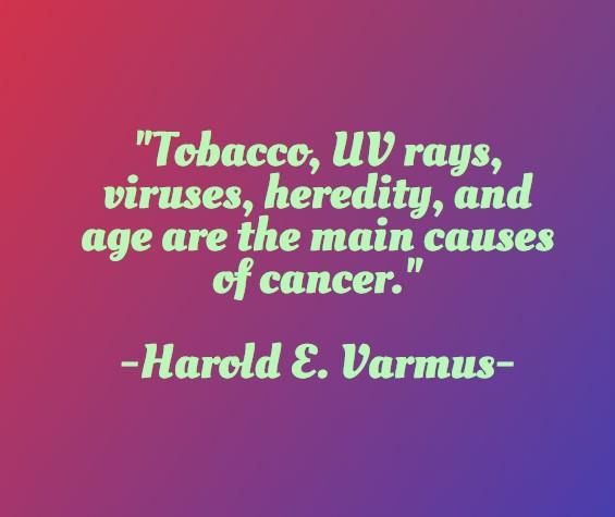 hvvirus